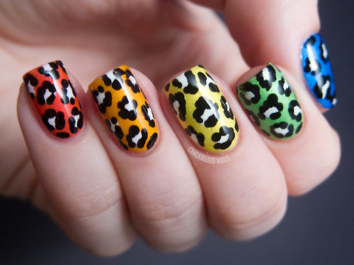 Animal print leopardo de colores